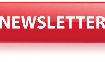 Newsletterdpn aspect ratio 350x206